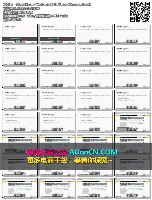 【ADonCN.com】Youtube营销 03. Who is this course for.avi