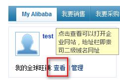 [域名管理]阿里国际站:公司的二级域名网址是什么?