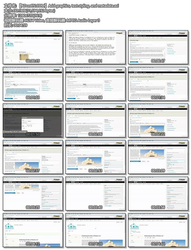 【ADonCN.COM】Add graphics, text styling, and metadata.avi