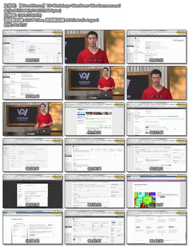 教你如何使用 Wordpress 和 WooCommerce 简单的创建一个电子商务网站