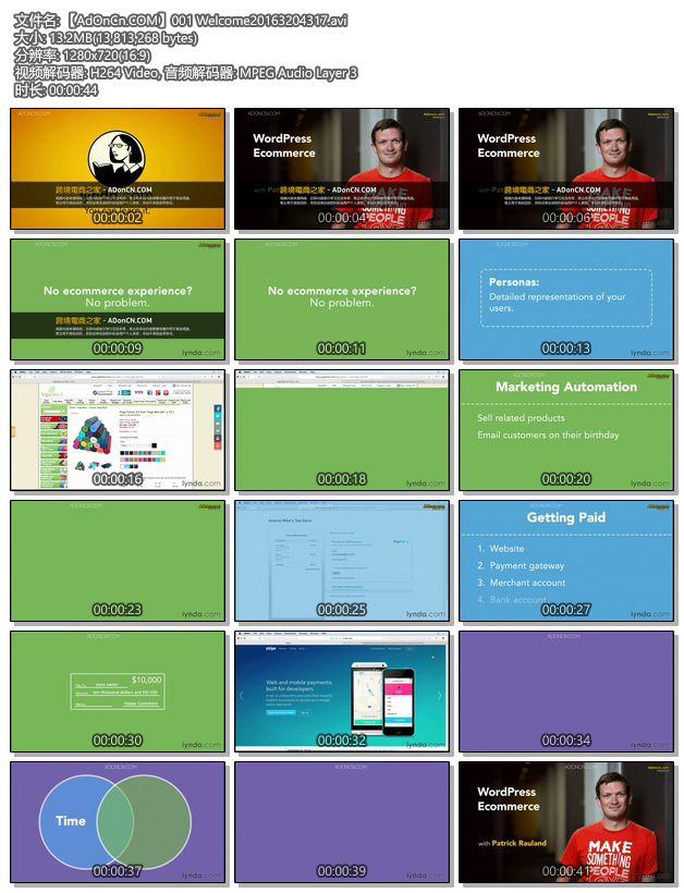 教你如何利用 WordPress 网站引导流量到你的 Online Store 的