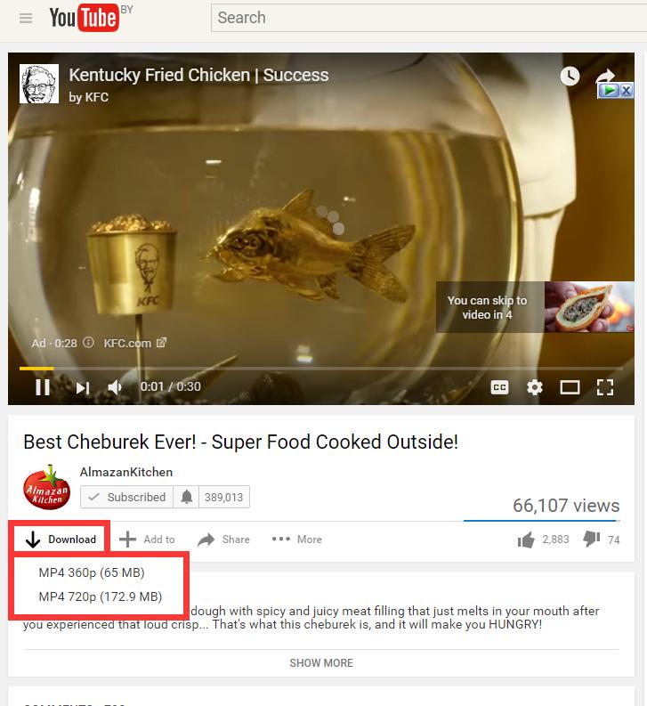 美国视频Youtube下载教程 - 教您怎么在线下载Youtube视频MP4格式