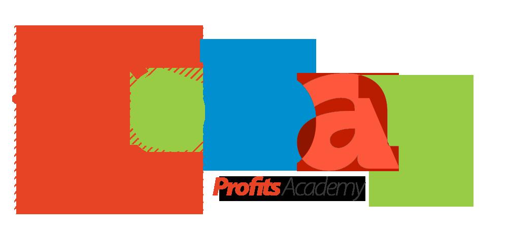 eBay利润学院 - 建立你的eBay业务以保证成功的前沿信息(Bay Profits Academy)