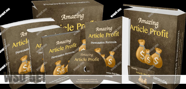 如何写出神奇的文章转化读者成为买家(Amazing Article Profit-persuasion Formula)