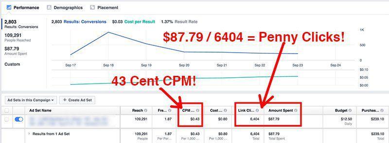 向您展示我所使用的精确的系统如何获得行业最便宜的付费流量并产生超过1000%的投资回报(Penny Clicks 4 Profit)