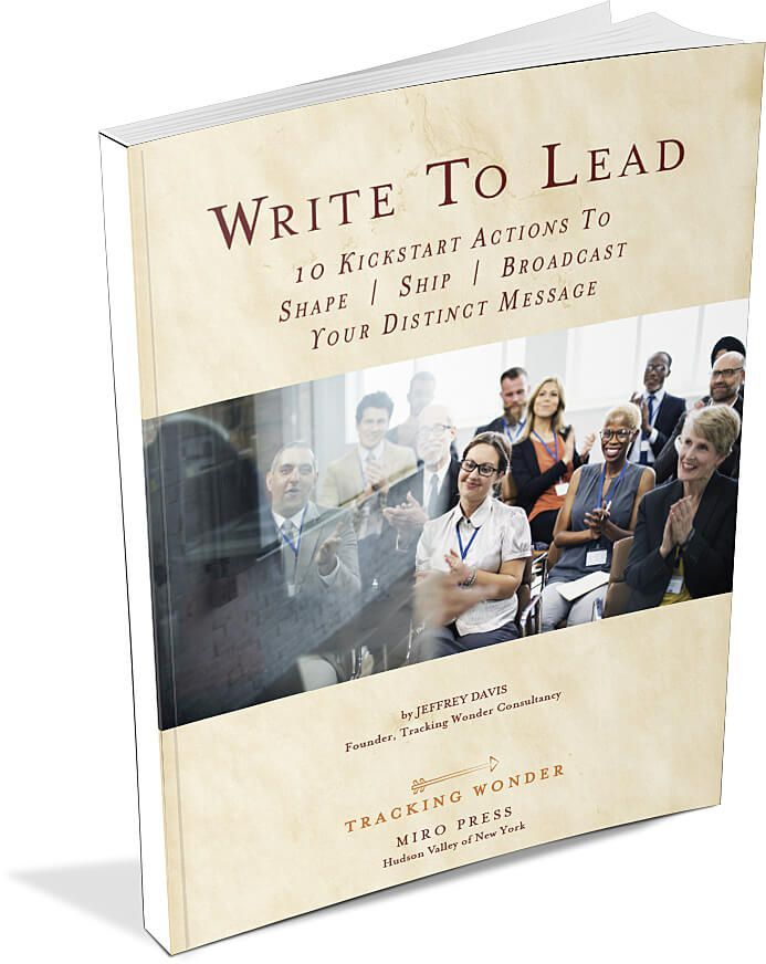 Write To Lead 3 D Paperback - 如何让你在自己的领域成为一个思想领袖(Write To Lead)