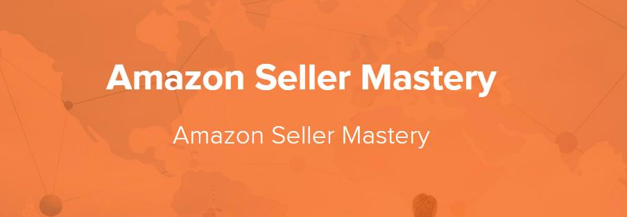 亚马逊大卖家 - 亚马逊电商运营开店选品推广电商入门实操教程(Amazon Seller Mastery)