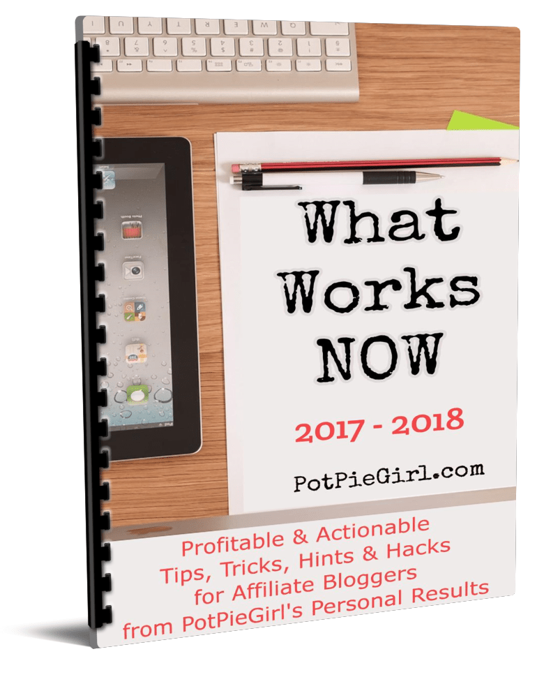 What Works NOW 2017-2018 is 60+ pages full of time-saving, actionable, and profitable tips and tricks that have helped my business in the past year.(What Works NOW 2017 - 2018)