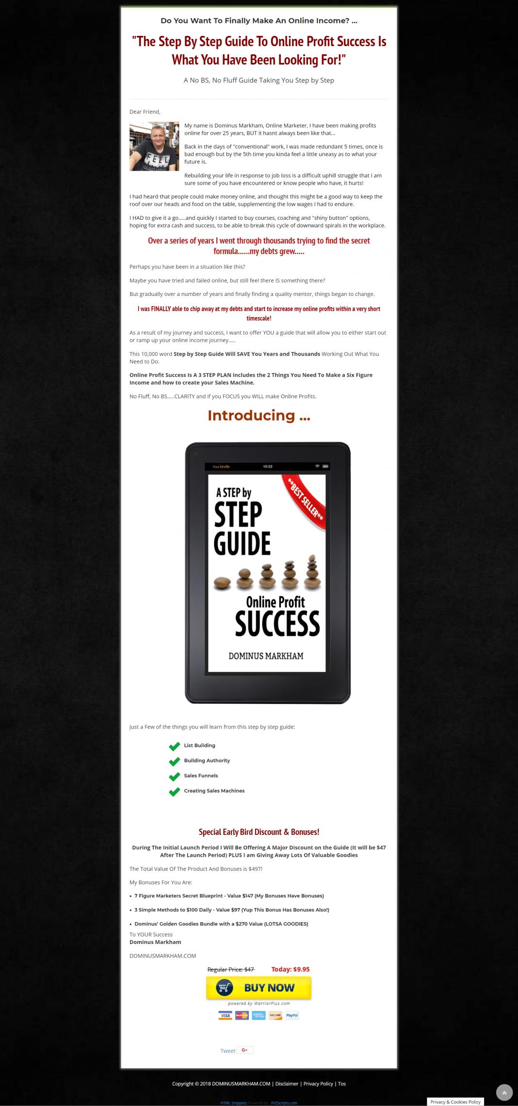 让你从零基础一开始就增加你的在线收入指南(Step By Step Guide Online Profit Success)