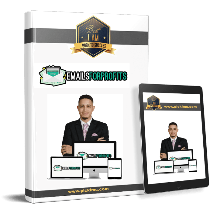 Emails for profits will teach you to create a successfull affiliate marketing business from scratch(Emails For Profits)