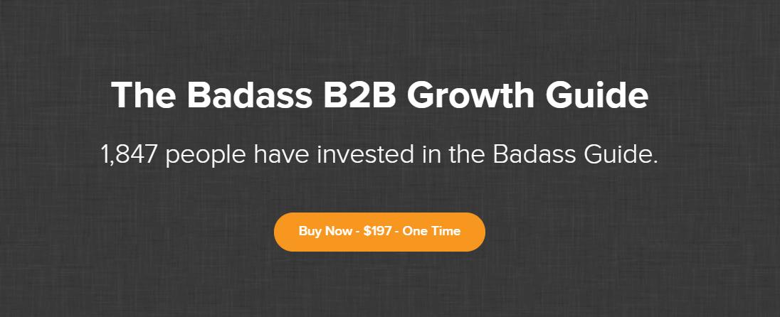 B2B增长指南(The Badass B2B Growth Guide)
