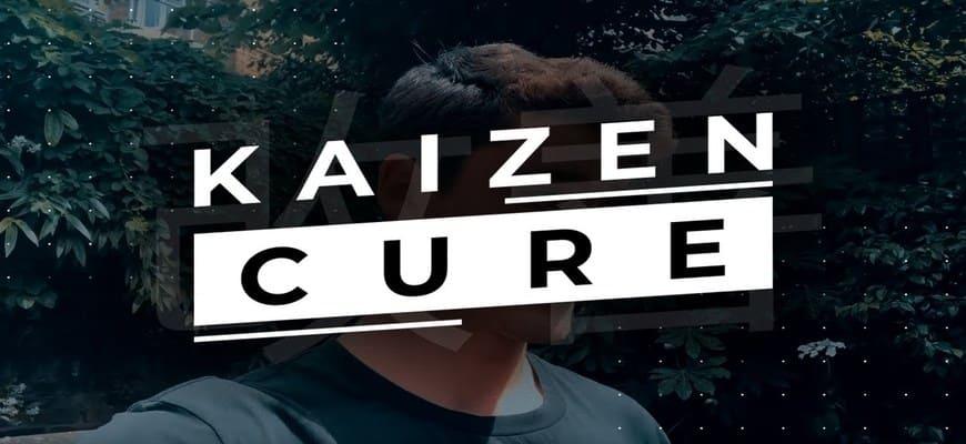 超级成功的人和那些还在苦苦挣扎的人之间唯一的区别 - 这套课程培训你如何把你的生意提升到下一个水平!(Kaizen Cure)